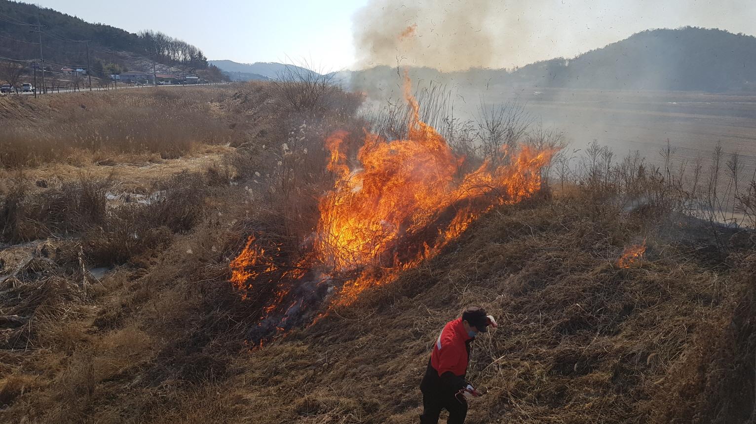 논밭두렁 태우기, 병해충방제 효과 없어