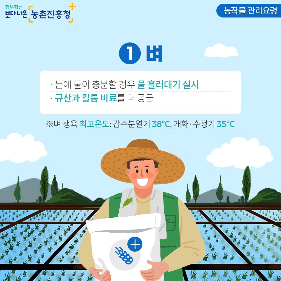 농작물 관리요령 - 벼