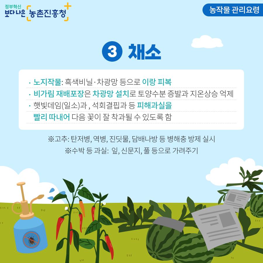농작물 관리요령 - 채소