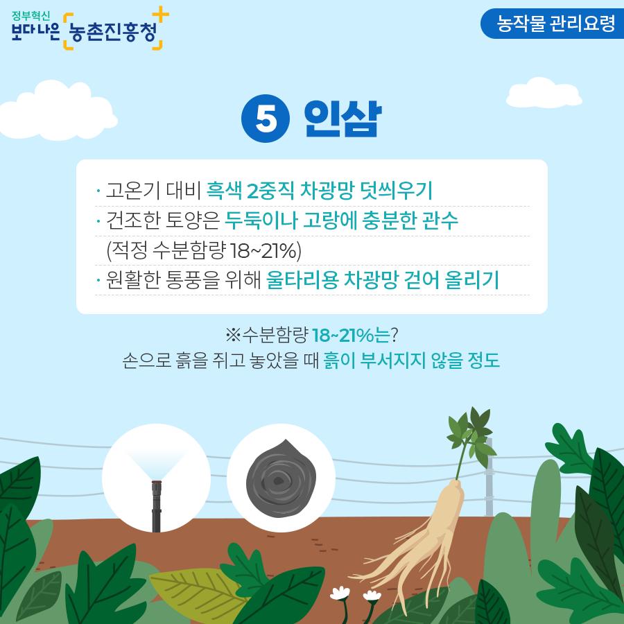 농작물 관리요령 - 인삼
