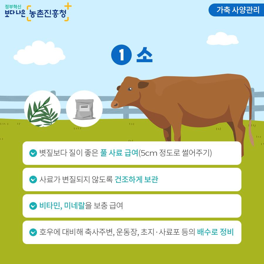 가축 사양관리 - 소