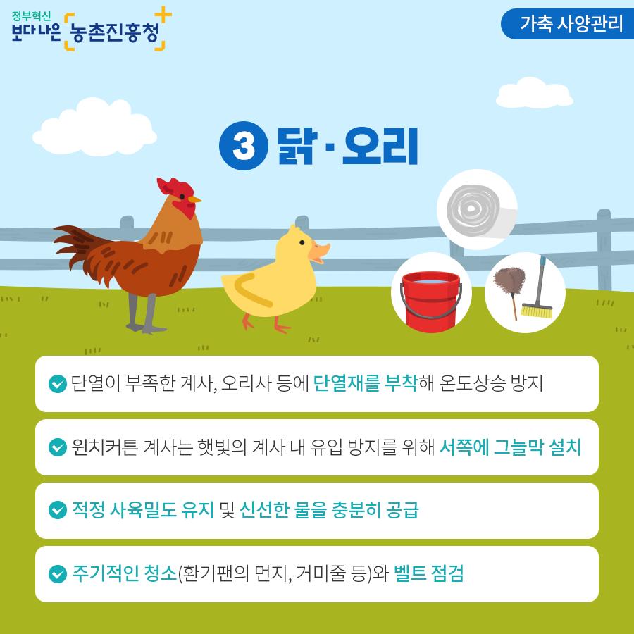 가축 사양관리 - 닭/오리