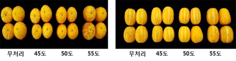 그림입니다. 원본 그림의 이름: CLP00018560000c.bmp 원본 그림의 크기: 가로 790pixel, 세로 205pixel